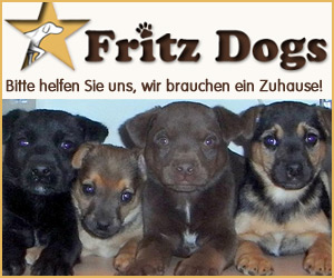 Fritz Dogs