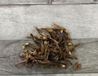 Snack Fisch Anchovies