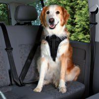 Trixie Auto-Sicherheits-Gurt - Größe XL