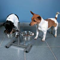 Trixie Hundebar höhenverstellbar
